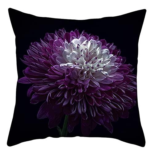 Daesar Cojines Cama,Funda Cojin Sin Relleno,Flor de Dalia Fundas Cojines de Exterior 50x50 Púrpura Negro