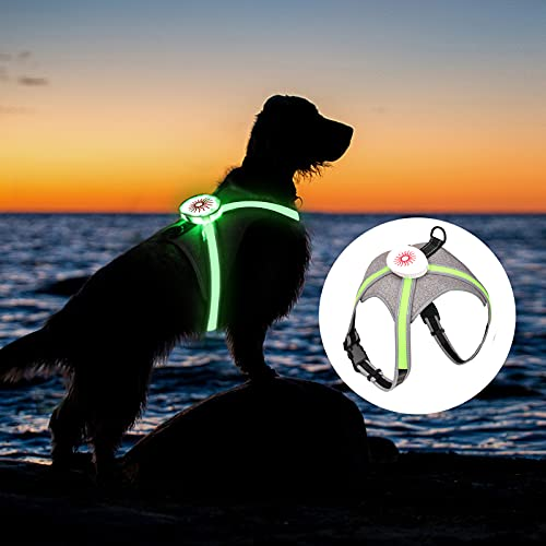 Oaoleer LED Dog Vest Harness,Revolutionary Illuminated Adjustable Size for Various Sizes Pet Dogs USB Rechargeable Rainproof Lightweight (Green Strap)