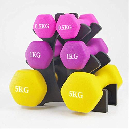 Golden days Mancuernas de gimnasio para hombres y mujeres de 1 a 5 kg para gimnasio en casa, fitness, equipo de deportes al aire libre, 0,5 kg x 1 morado