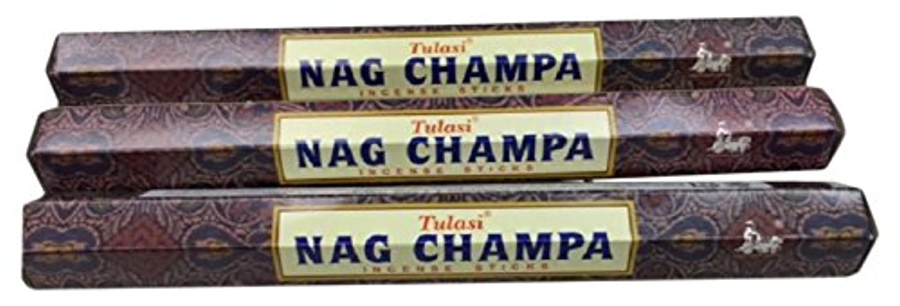 観光に行く配る北TULASI サラチ STICKS お香 60本入り NAG CHAMPA ナグチャンパ 025001-3