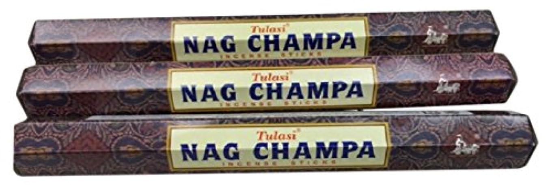 曲がった落胆させる配偶者TULASI サラチ STICKS お香 60本入り NAG CHAMPA ナグチャンパ 025001-3