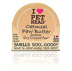 Amazing Dog Paw protectors to try right now, perfect dog paw wax to protect dogs from summer's heat