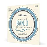 D'Addario EJ69 Phosphor Bronze 5-String Banjo Strings, Light