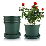T4U Plant Pots with Saucers - 0.9 Gallon 7.5 Inch Plastic Dark Green Set of 6, Root-Control Nursery Seedling Planter Garden Flower Pot Container for Indoor Outdoor Bonsai Plants, Aloe, Herb