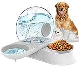 LeYoMiao Distributeur d'eau automatique 2 en 1 pour animaux domestiques et gamelles de nourriture, gamelle pour chat et chien en forme d'escargot sans déversement 2,8 l