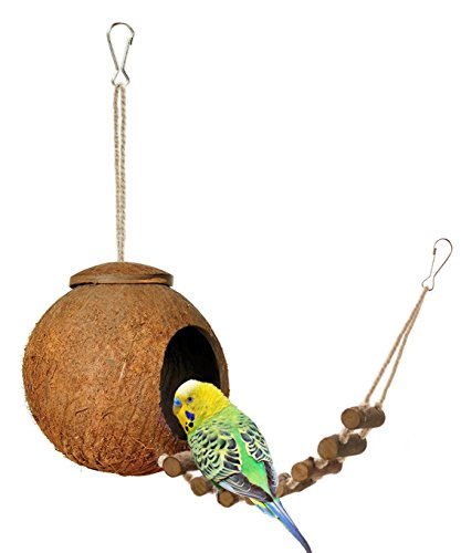 Niteangel Natural Coconut Hideaway with Ladder, Bird and Small Animal Toy (House with Ladder,...