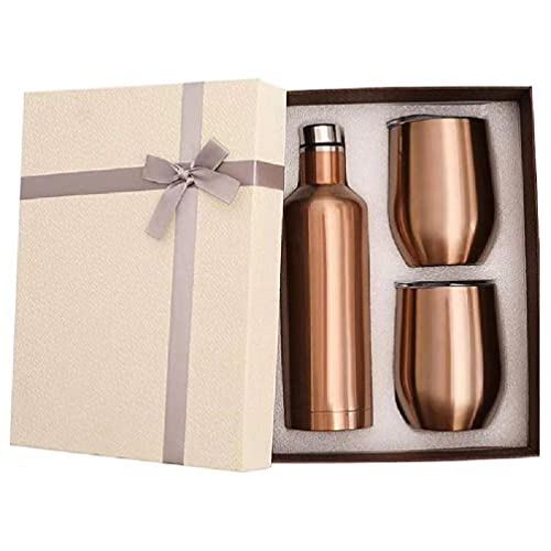 Termo de vacío con 2 juegos de frascos de vacío, botella de vino de doble pared de acero inoxidable de 500 ml y 2 paquetes de frascos de vacío de 12 onzas, botella inteligente sin aire
