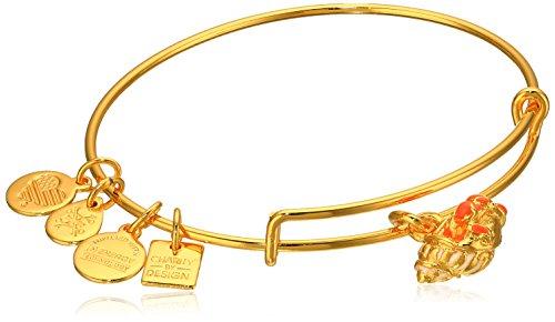 Alex and Ani Hermit Crab Expandable Gold-Tone Bangle Bracelet