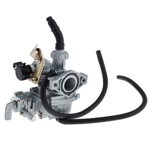 Nobranded Carburador de Repuesto de 19 Mm para Motores DY100 CD110