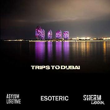 Trips to Dubai