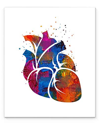 Human Heart Medical Anatomy Wall Art, 11x14 inch Ready to Frame Abstract Watercolor Style Print, Ideal for Cardiologists, Doctors, Medical Professionals, Clinic Décor or Medical Office Art