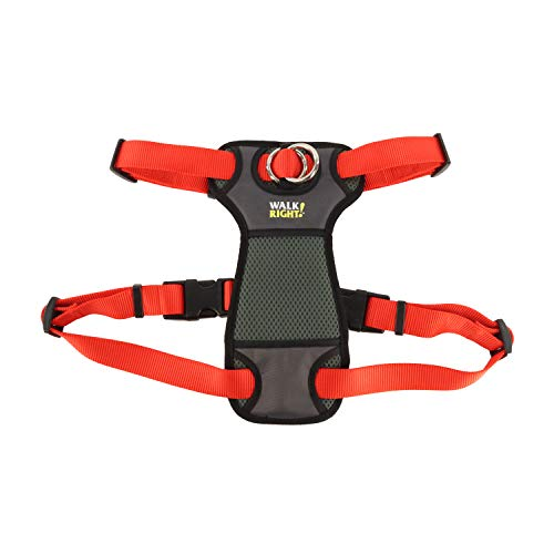Walk Right Padded Front Harness