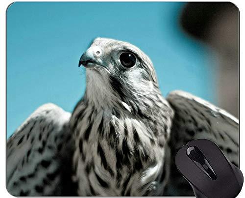 Gaming Mouse Pad Benutzerdefinierte, Eagle Bird Themes Mouse Pad mit genähtem Rand