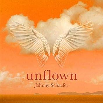Unflown
