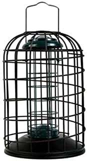 Walter Harrison's Wild Bird Feed Protector squirrel Proof Hanging Fat Ball and Suet Roll Feeder - 20 cm