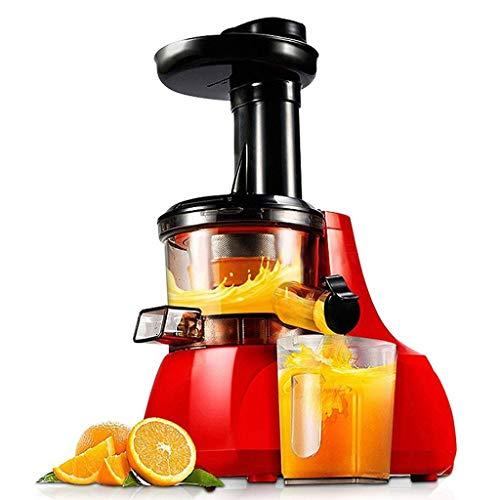 ZTTTD Slow Masticating Juicer Extractor Leicht zu reinigender, leiser Motor und Umkehrfunktion, kaltgepresster Entsafter mit Pinsel, Saftrezepte für Gemüse und Obst
