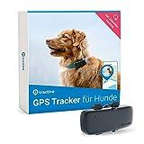 Tractive GPS Tracker für Hunde, unlimitierte Reichweite , Aktivitätstracking, wasserdicht...