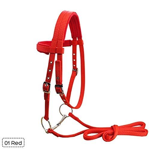 ZANGAO Regolabile Morbida Equitazione Attrezzature Halter Cavallo Briglia con morso e Rein Fissa la Cinghia for Le Cavallo Equestre Accessori (Color : Red)