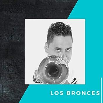 Los Bronces
