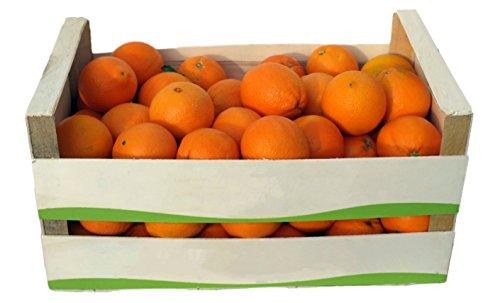 ARISTOS Griechische Orangen Unbehandelt | Apfelsinen | Ungewachst | Auch als Saftorangen | Schale zum Kochen Backen Marmelade geeignet | Navel Orangen (12 kg) Ernte: 30. März 2020