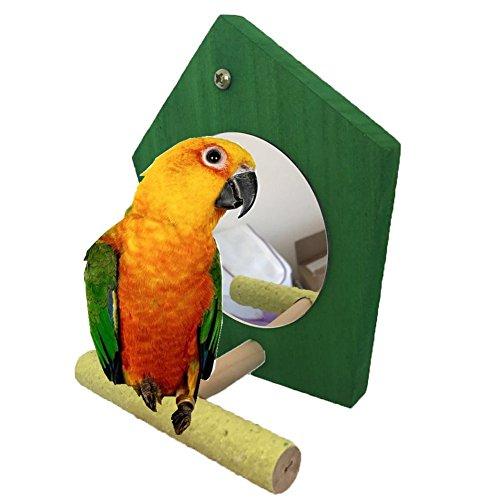 Bird Parrot Miroir jouet avec perchoir pour perroquet perruche perruches Calopsittes Amazones Finch inséparables Gris du Gabon Ara Amazon cacatoès Cage à oiseaux Bois Perchoir de support (couleur aléatoire))