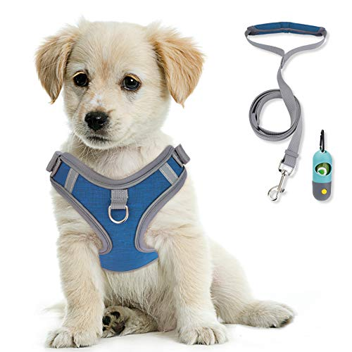 KITTYWOO Dog Vest Harness Leash Set No Pull Dog Vest Harness Puppy Padded Mesh Vest with Leash Easy Put On & Take Off Vest Harness for Small to Large Breed Pets