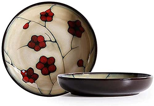 VYUWF Juego de tazones para Cereales, vajilla de cerámica, tazón para el hogar, tazón para Ensalada de Frutas, tazón para arroz, Plato pequeño, tazones para Pasta (Color: #C)