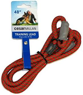 Cesar Millan Slip Lead Leash Dog Leash in Training Leash Regular Red Olive product image