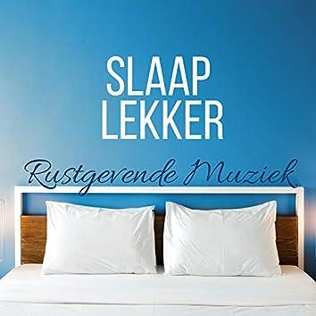 Slaap Lekker - Rustgevende Muziek met Delta Golven om in Slaap te Vallen