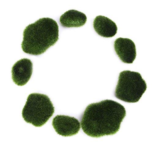Youlin 10Pcs Boules de Mousse Vivantes,6-7cm,Boule De Mousse Boule Herbe,Plante Aquatique Vivante Cladophora pour Aquarium