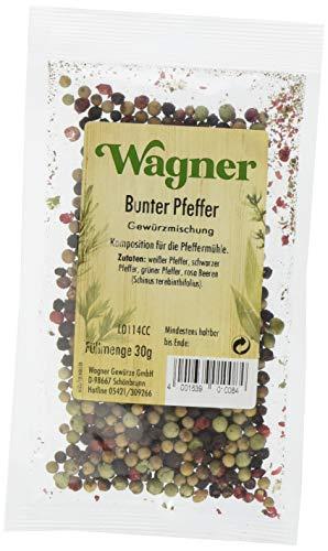 Wagner Gewürze Bunter Pfeffer ganz Gewürzmischung (1 x 30 g)