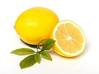 Lemon Meyer Conventional, 1 Each