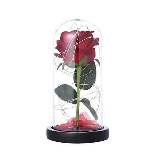Nicoone Rosa Roja en Cúpula de Cristal con Cadena de Luz Led Decoración del Hogar Regalo de Valentín