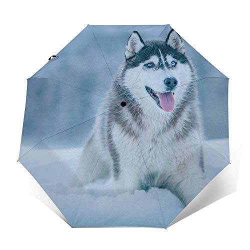 Paraguas plegable manual, color blanco y gris siberiano Husky de lluvia paraguas...