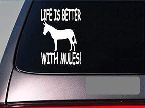Het leven is beter met Muilezels *F389* 6