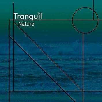 # 1 Album: Tranquil Nature