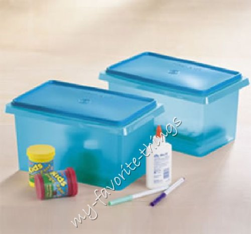 Tupperware Small Carry All Container