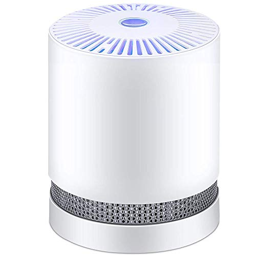 Affordable HW Air Purifier for Home with True HEPA Filters,Compact Desktop Purifiers Filtration with...