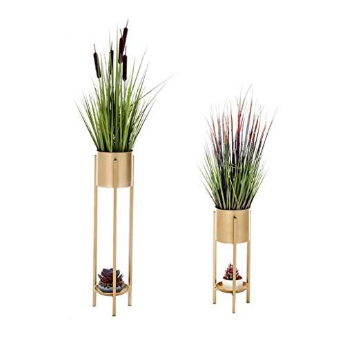 YYH Juego de 2 estantes de exhibición de Plantas Decoración del hogar Tenedor de macetas for Plantas de Hierro Salón Interior Balcón 2 Capas
