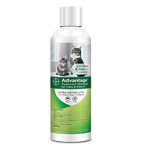 Advantage Flea and Tick Treatment Shampoo for Cats and Kittens, 8 oz