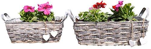 khevga Set di 2vaso per piante in metallo–Stile Rustico Vasca