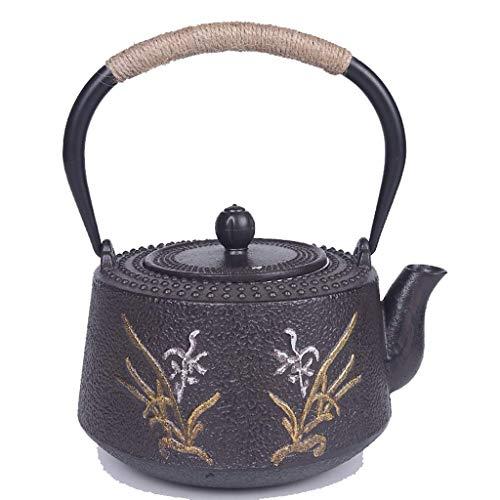 XZJJZ Teapot- Tetera de Hierro Fundido con Acero Inoxidable Filtro for té Negro como Regalo, Hervidor Saludable