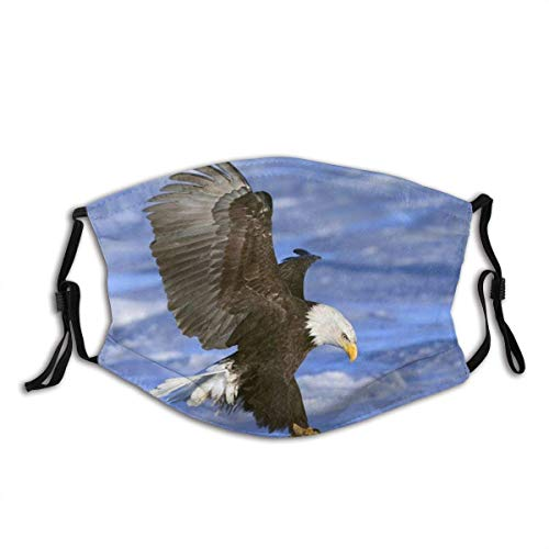 American Flag Bald Eagle The Eagle Hawk Falcon Print Unsex Dustproof Adjustable Earloop Balaclava Face Mask Mouth Protection Cotton with 2 Filters for Cycling Travel Outdoors