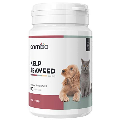 Animigo Kelp Seaweed For Cats & Dogs - Pet Wellbeing Supplement - Skin, Hair & Coat Health - Supports Brain & Thyroid Benefits - Rich Source of Iodine, Vitamins & Minerals - 60 Kelp Capsules