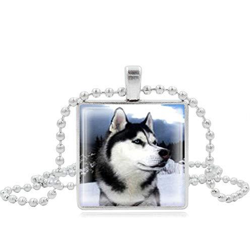 GYXYZB Schlittenhund Husky Time Gem Halskette Alloy Glass Pendant