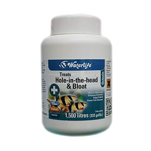 Waterlife Octozin 200 Tablets Dropsy & Hole In The Head