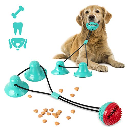 Shinmax Hundespielzeug,Multifunktion Hundezahnbürste Hundespielzeug Kauspielzeug,Ball Leckerli-Spender für Ball Leckerli-Spenderfür Kleine mittelgroße und großeHunde,Hundespielzeug mit Saugnapf&Glocke