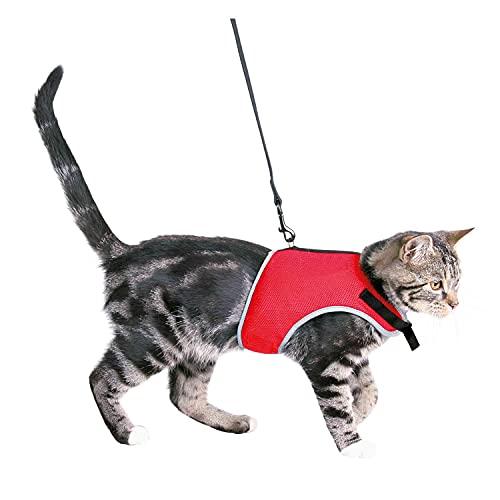 Trixie 41896 Softgeschirr mit Leine, Katze, 24–42 cm, 1,20 m