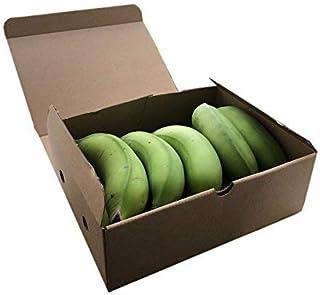 沖縄県産 島バナナ(小笠原種)  (約500g相当分)  甘みと酸味のバランスが絶妙で濃厚な風味