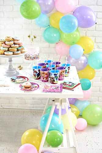 American Greetings Paw Patrol Party Decorations, Banner (1-Count)